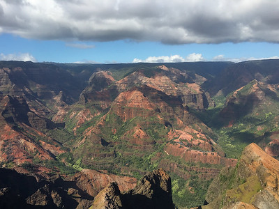 Waimea Canyon. Photo by guide Doug Gochfeld.
