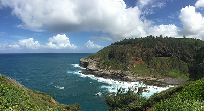 Beautiful Kilauea Point, photographed by guide Doug Gochfeld.