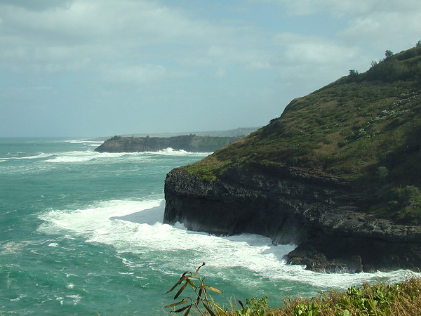"Kilauea Point, Kauai<div id=""caption_tourlink"" align=""right""> [photo © guide Alvaro Jaramillo]</div>"