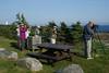"Scoping Great Cormorants near Louisbourg. <div id=""caption_tourlink"" align=""right""><br>[photo © Chris Benesh]</div>"
