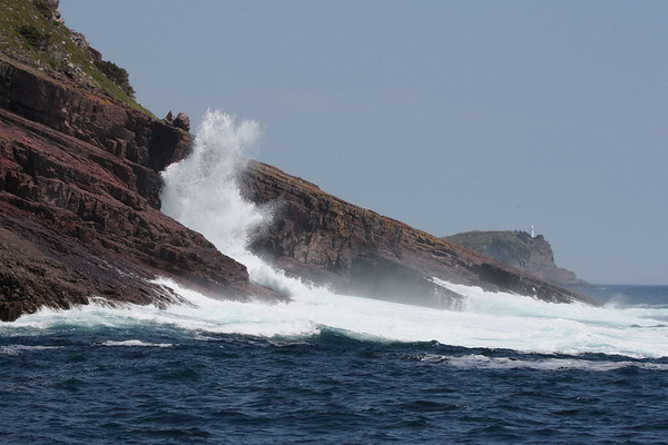 "Waves crashing against the ancient shores of the Avalon Peninsula, Newfoundland.  These are some of the oldest rocks on Earth. <div id=""caption_tourlink"" align=""right""><br>[photo © Chris Benesh]</div>"