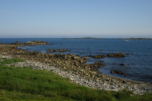 """The mouth of Louisbourg Harbour, with Great Cormorant, Black Guillemot, Common Eider, and Gray Seal to occupy us. <div id=""""caption_tourlink"""" align=""""right""""><br>[photo © Chris Benesh]</div>"""