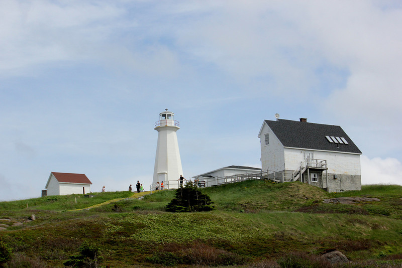 Cape Spear, located on the Avalon Peninsula near St. John's, Newfoundland, is the easternmost point in North America and provides pretty good sea birding to boot. (Photo by guide Lena Senko)