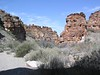 "Big Bend National Park <div id=""caption_tourlink"" align=""right""> [photo © participants Bill & Nancy Denton]</div>"