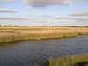 "Wetlands<div id=""caption_tourlink"" align=""right""> [photo © participant Peter Heilbroner]</div>"