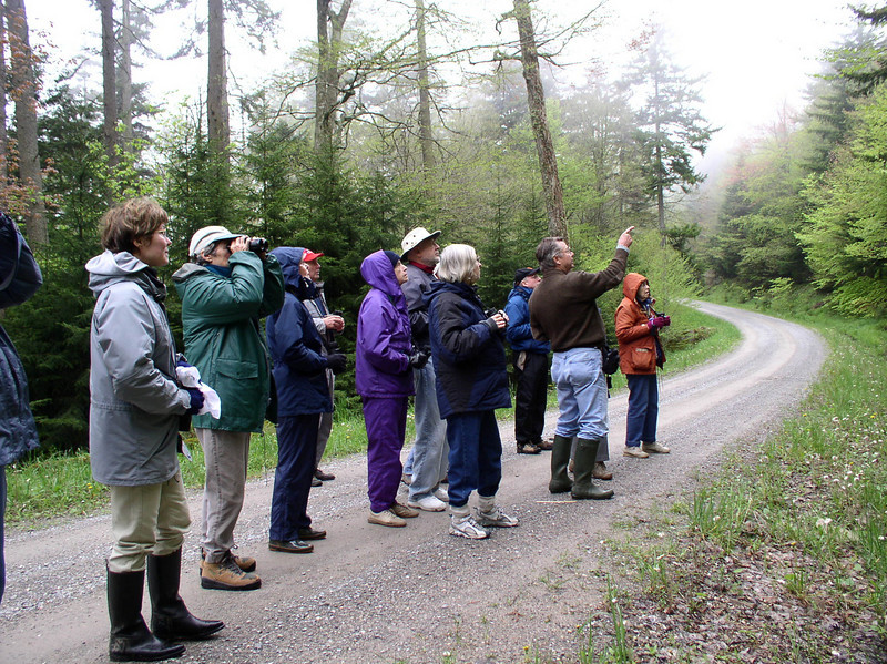 "John Rowlett points out something of interest to one of our past groups. <div id=""caption_tourlink"" align=""right"">[photo © guide Bret Whitney]</div>"