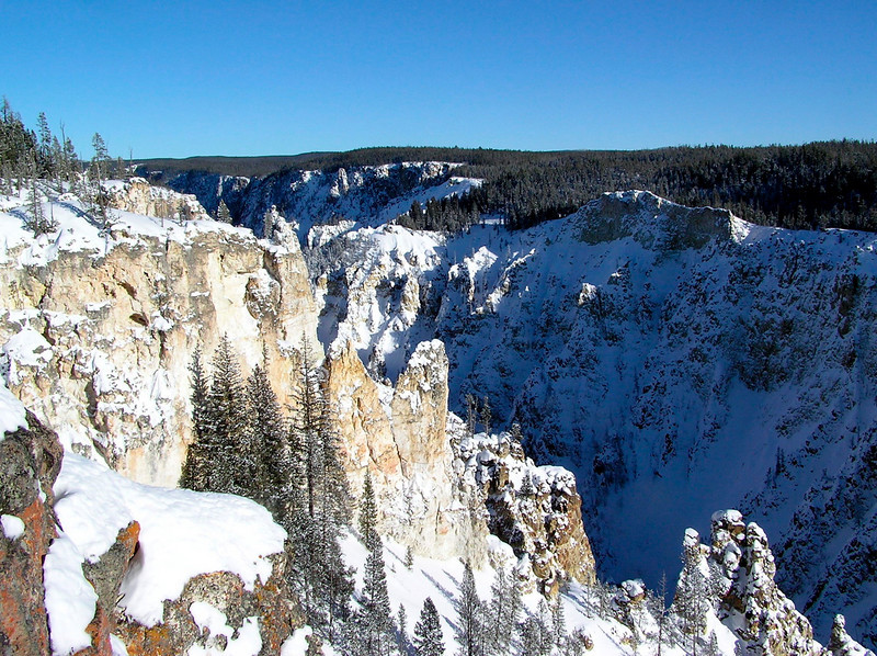 "The Grand Canyon of the Yellowstone <div id=""caption_tourlink"" align=""right""> [photo © participant Bill Denton]</div>"