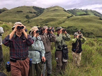 Our group on serious scan duty in the high southern grasslands of Spectacular Southeast Brazil. Photo by guide Bret Whitney.