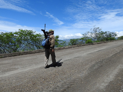 A man on a mission: Loads of endemics await along the Old Loja Road in southern Ecuador -- follow guide Willy Perez, he aims to find them! Photo by participant Charm Peterman.