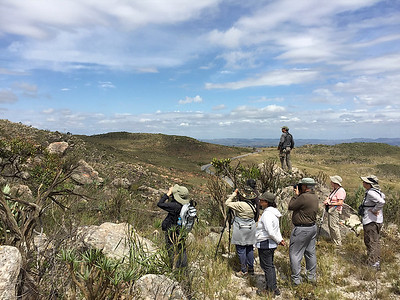 Guide Marcelo Padua takes the high ground as our Safari Brazil group birds Cipo National Park, home to such goodies as Hyacinth Visorbearer and Cipo Canastero. Photo by participant Marshall Dahl.
