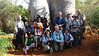 Our intrepid birders pause for a group shot in front of Madagascar's famous Baobab trees. Photo by guide Phil Gregory.