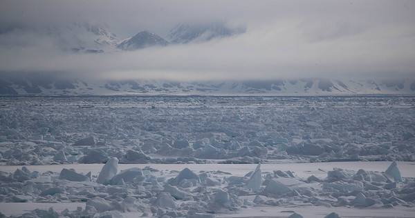Ultimately, to see the far-northern wildlife, the group traveled northward, into the pack ice, here northwest of Svalbard.