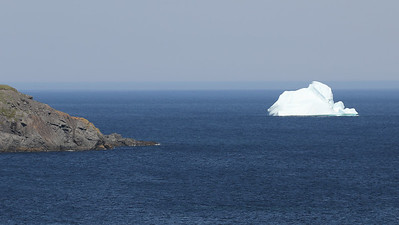 Another kind of lifer for many: summer in Newfoundland can mean icebergs still offshore. Photo by guide Chris Benesh.