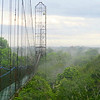 And here's the canopy walkway in question, the three-towered wonder at Sacha Lodge in eastern Ecuador. Photo by participant Nancy Barnhart.