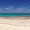 Island-hopping to another set of images, this classic Caribbean scene on Eleuthera Island is by guide Jesse Fagan from his recent Bahamas Endemics & Kirtland's Warbler tour.
