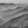 We wrap up our Bhutan images with this lovely long view at Latong from guide Richard Webster.