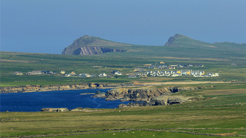 The Emerald Isle if full of fabulous vistas to complement our birding, music, and pub-crawling. This is the Dingle Peninsula by participant George Nixon.