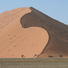 Massive sand dunes at Sossusvlei are a sight to behold. Check out the trees for scale. Photo by guide Terry Stevenson.