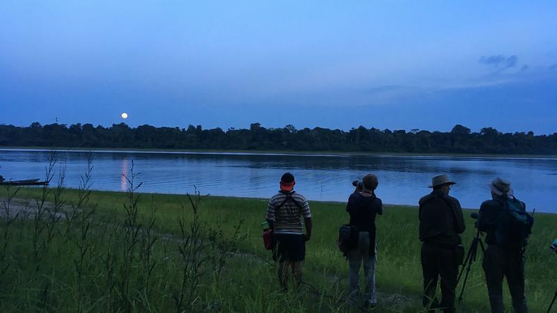 Moonlight and Nighthawks gr117 Alice Henry Whitmore.jpg