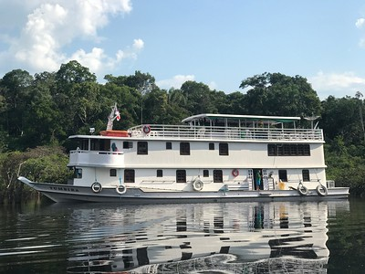 Our Great Rivers of the Amazon tours all feature birding with a riverboat as our base. We cruised in luxury, surrounded by lush habitat. Photo by guide Tom Johnson.