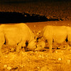We caught up to Black Rhinos at night at a waterhole -- thus the odd lighting in this pic by guide Terry Stevenson.