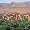"""We begin this month's Recent Photos gallery with images from three very different destinations in beautiful <b>Morocco</b>, where guide George Armistead and group birded on our September tour. Here's an overlook of Tinerhir in the Todra Valley. <br><em>(Web page links are in blue above if you'd like more details on any of this month's gallery tours, and you can see George's 2009 triplist <a href=""""http://www.fieldguides.com/triplists/mor09LIST.pdf"""" target=""""_blank"""">here</a>.)</em> <div id=""""caption_tourlink"""" align=""""right""""> [Photo © George Armistead]</div>"""