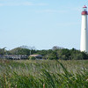 """Here's a series of some classic sites and sights from Cape May birding: first, the hawkwatch observation deck and famous Cape May lighthouse. <div id=""""caption_tourlink"""" align=""""right""""> [Photo © Pat Newman]</div>"""
