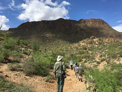 We get to go birding in some sublime settings on our Arizona tours. Photo by participant Jeannette Shores.