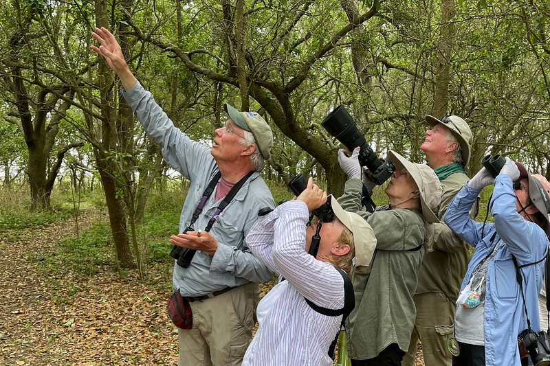 """What, birding in a group again, even unmasked? Yes, with a fully vaccinated group and guide (John Coons in the lead here), now a requirement on our tours, we were able to enjoy the trip in our own """"bubble"""" of sorts."""