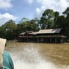 Next up, the tidy Sukau Rainforest Lodge, right on the Kinabatangan River, was home for several nights, as the group prepared to check out the lowlands. Photo by participant Alice Whitmore.