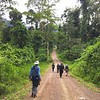 Much of the Danum Valley birding is relatively easy, along roads like this one, which provide good vistas of canopy and sky. Photo by participant Alice Whitmore.