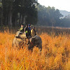"""Searching for Tiger? Another of the preferred local ways is to look from elephant-back with your mahout as """"driver."""" (Photo by participant John Sevenair)"""