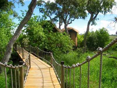 We stay at some lovely spots on the tour. Here's the walkway at the Baines Camp in Botswana. Photo by participant Martha Vandervoort.