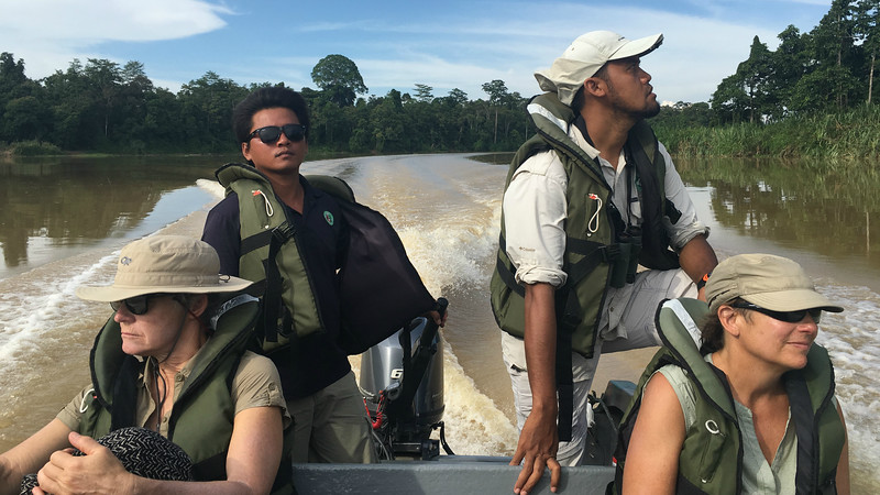 We close with this image from our afternoon boat ride along the Kinabatangan River with boatman and local guide on the lookout. Photo by participant Suzanne Winckler. Our thanks to everyone who contributed to this gallery. Till next month, good birding from all of us at Field Guides!