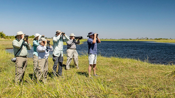Guide Joe Grosel (r.) leads the group in a scan of wetlands at Macatoo. Photo by participant Don Taves.