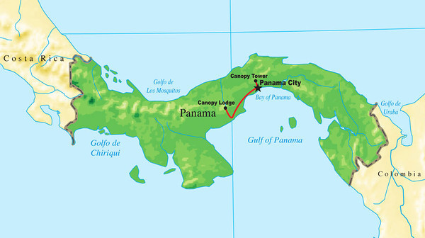 Now let's bounce back to southern Central America, this time for one of our Panama's Canopy Tower tour. (Some of our departures offer a Canopy Lodge extension as well, thus its inclusion on the map.)