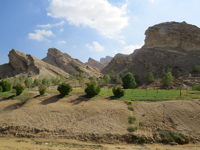 """Green Mubazarrah Park at Al Ain, where a patch of the otherwise arid landscape has been """"greened"""" with irrigated exotics. (Photo by guide Phil Gregory)"""