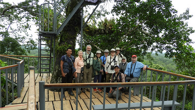 Moving to a different itinerary, let's join guide Willy Perez (kneeling) and his happy group of birders 100+ feet above the ground atop the marvelous Kapok Tower during our recent Amazonian Ecuador: Sacha Lodge tour.