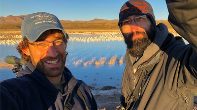 Here are guides Doug Gochfeld (l.) and Cory Gregory in front of another of the various geese concentrations...the light was just beautiful!