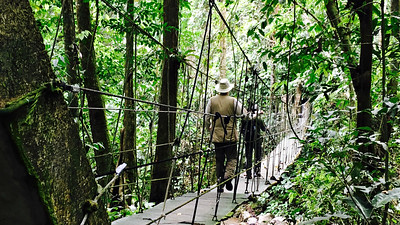 Several suspension bridges on the Canopy Lodge trails gave us opportunities to scan for Fasciated Tiger-Heron. Photo by participant Alice Whitmore.