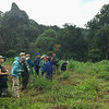 Our Vietnam group birding the Tanung Valley, with guide Dave Stejskal in red cap. Photo by guide Doug Gochfeld.
