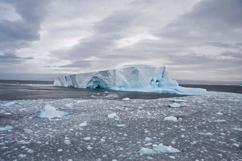 """In route to Elephant Island the ship encountered lots of pack ice and icebergs which slowed our journey but made it all the more beautiful.<div id=""""caption_tourlink"""" align=""""right""""> [Photo © guide George Armistead]</div>"""