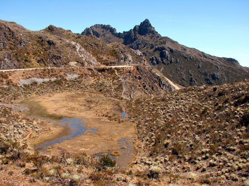 Here, the first area we visit on the main tour: the Merida Andes above Santo Domingo. Shown here is the high-elevation habitat near Pico El Águila, home to the fancy Bearded Helmetcrest hummingbird and Ochre-browed Thistletail.  (Photo by participant Shirley Sekarajasingham)