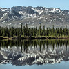 A mirror image is part of the lovely scene as we bird along the Denali Highway. (Photo by participant Kevin Watson)