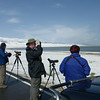 Birding in the snow at Kok Nor (Photo by participant John Keith)