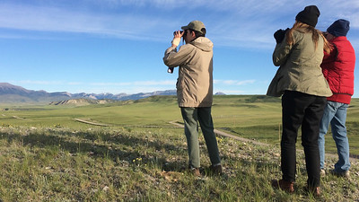 Westward now to our Montana: Yellowstone to Glacier tour, where our birding includes grand open vistas, too. Photo by guide Terry McEneaney.