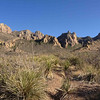 ...and the well-chiseled Chisos Mountains.... (Photo by guide Chris Benesh)