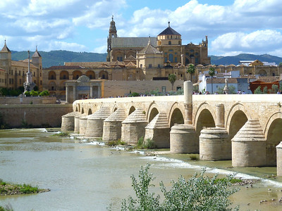 In addition to great birding, Spain features fantastic landscapes and historical sites: Here's the city of Cordoba's Roman bridge with the famous mosque-cathedral known as the Mezquita in the background. (Photo by participant Ed LeGrand)