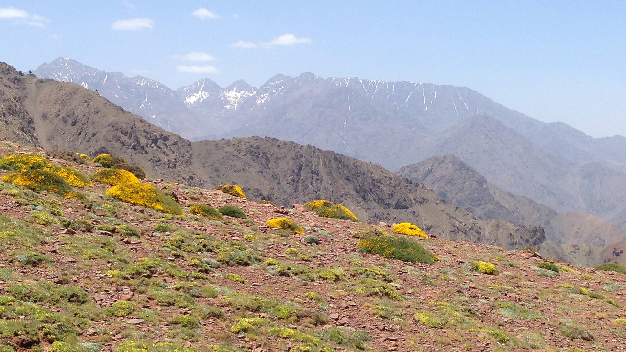 A birding stop: Oukaimeden in the High Atlas Mountains, by guide Jesse Fagan.