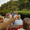 From Colombia, we head to Ecuador for two tours, the first one our Sacha Lodge itinerary. Here is guide Willy Perez pointing out a species coming to the water's edge. Photo by participant Nancy Johnson.